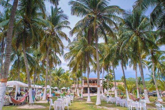 Isla Tierra Bomba, Colombia: Todo es al aire libre, esta es la zona de las hamacas.