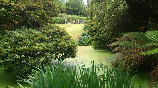 The Lost Gardens of Heligan: Lovely ponds and hillsides