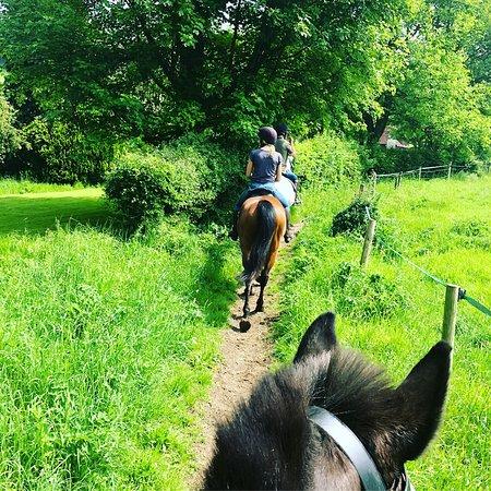 Slades Farm Equestrian