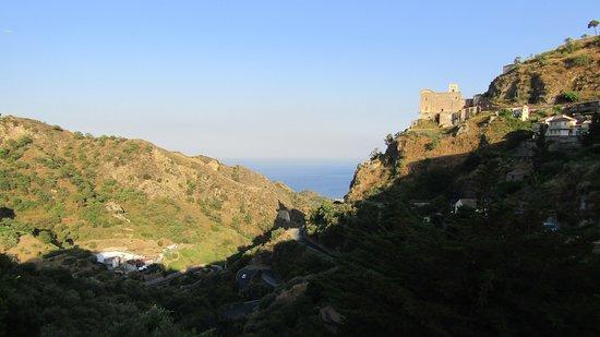 写真Pineta di Savoca枚