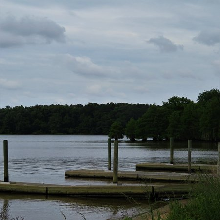Georgia Veterans State Park: Boat landing and dock.