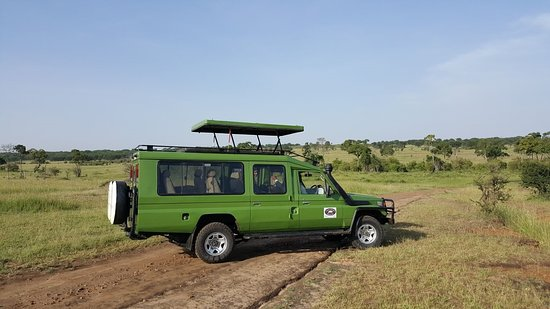 Tanzania Serengeti Adventure Ltd
