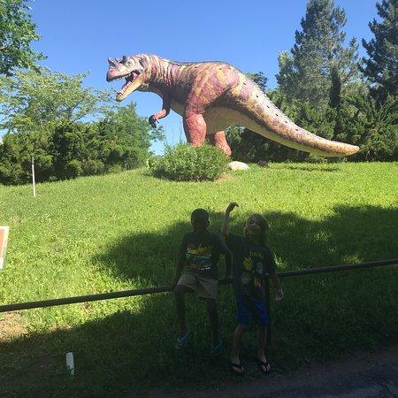 George S. Eccles Dinosaur Park: photo0.jpg