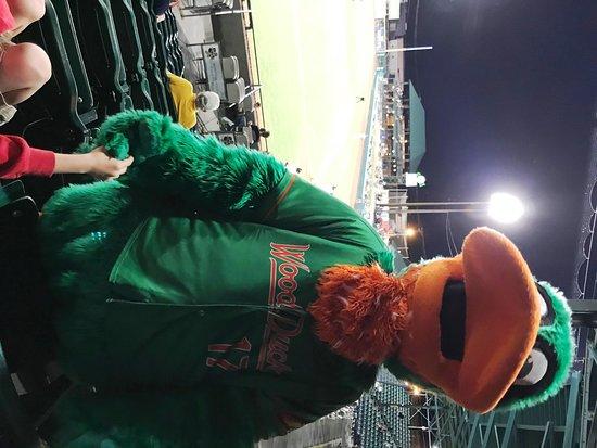 Grainger Stadium: Wood Ducks Mascot - In the Stands Entertaining Kids