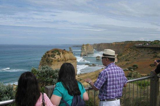 Private Express Tour av Great Ocean...