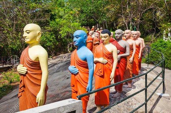 Excursion d'une journée à Kandy avec...