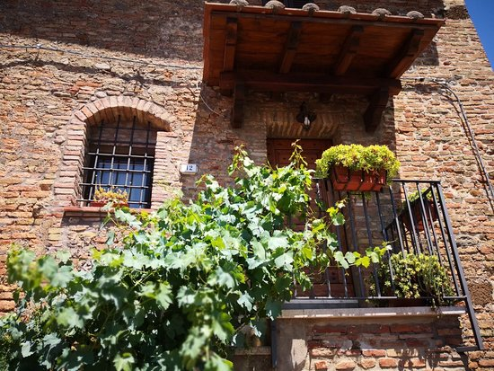 Fabro, Italy: IMG_20180610_124930_large.jpg