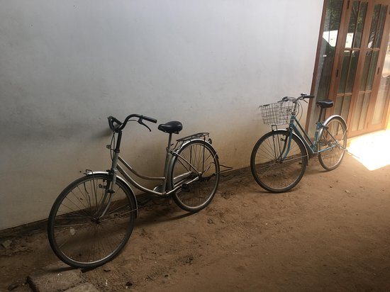 Leesha Tourist Home: Bikes available in the tourist home