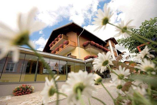 Dorfhotel Fasching Au 100 2019 Prices Reviews Fischbach