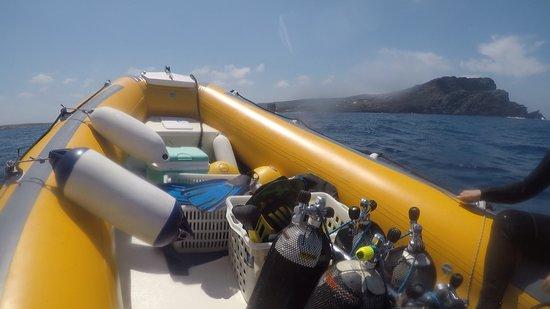 Asinara Scuba Diving: Gommone