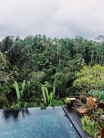 Amazing Villas