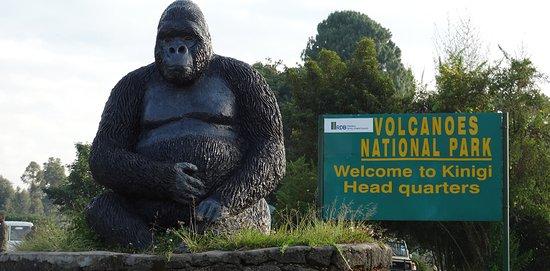 Volcanoes National Park: Kinigi Headquarters