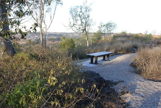 Toowoomba, Australia: Top of Mt Peel Bushland park