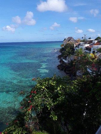 Prospect, Barbados: 20180526_075955_large.jpg