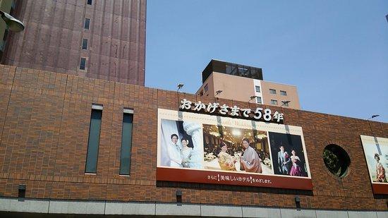 熊本ホテルキャッスル, 外観