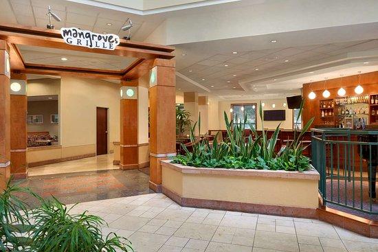 Embassy Suites By Hilton Tampa Usf Near Busch Gardens Desde S 481 Fl Opiniones Y