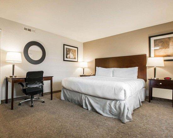 Rodeway Inn Convention Center 142 ̶1̶9̶7̶ Updated