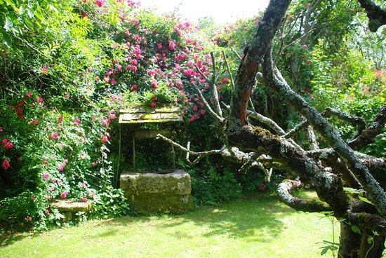 Jardin du Prieure de Laverre