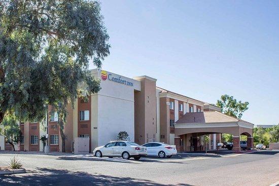 Bed Bugs Beware Review Of Comfort Inn Suites At Talavi Glendale Az Tripadvisor
