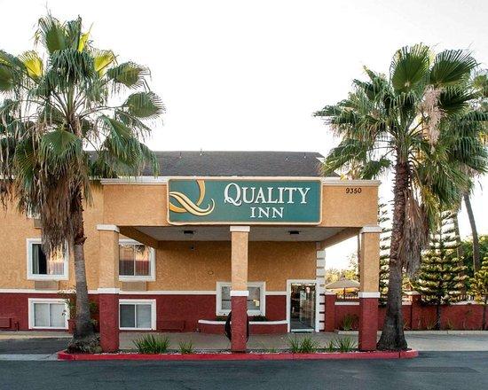 Quality Inn San Go Miramar Updated 2018 Prices Reviews Photos Ca Hotel Tripadvisor