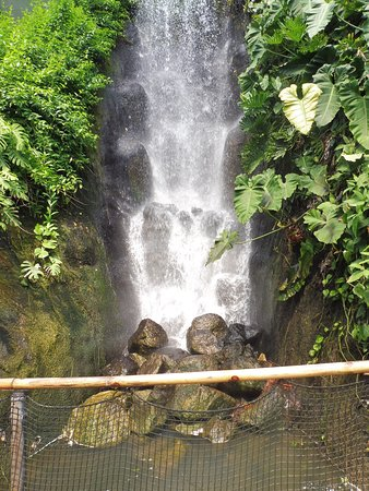 Eden Project: Waterfall in the dome.