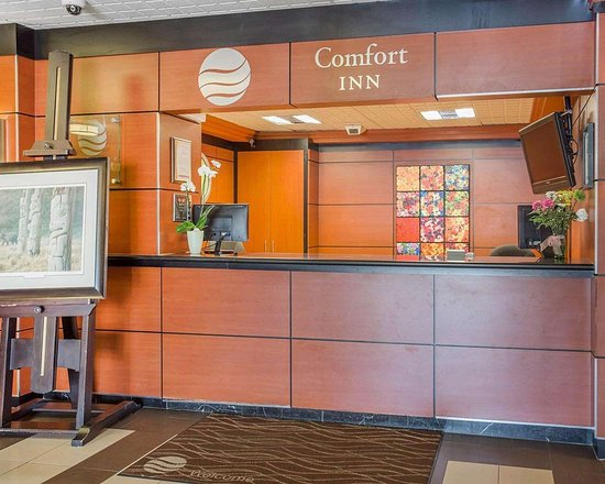 comfort inn toronto airport 86 9 6 updated 2018. Black Bedroom Furniture Sets. Home Design Ideas