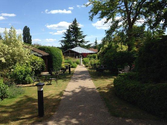 Museum of Farnham: View along gardens