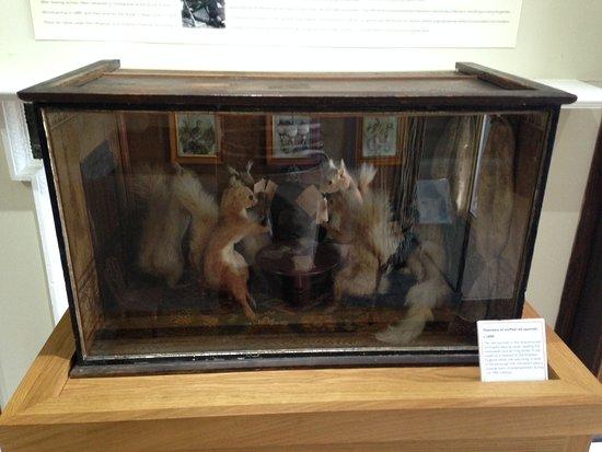 Museum of Farnham: Diorama