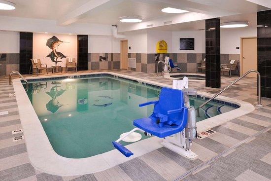 Hampton Inn & Suites Denver-Speer Boulevard: Indoor pool