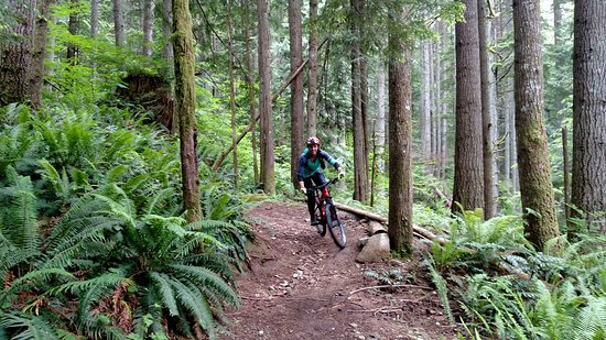 22d212146e2 Seattle Mountain Bike Tours: UPDATED 2019 All You Need to Know Before You Go  (with PHOTOS)