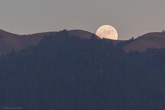 Shayne Skower Fine Art Photography: Moonrise over Mt Tamalpais