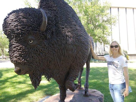 Buffalo Statue: Beautiful buffalo made of rebar.