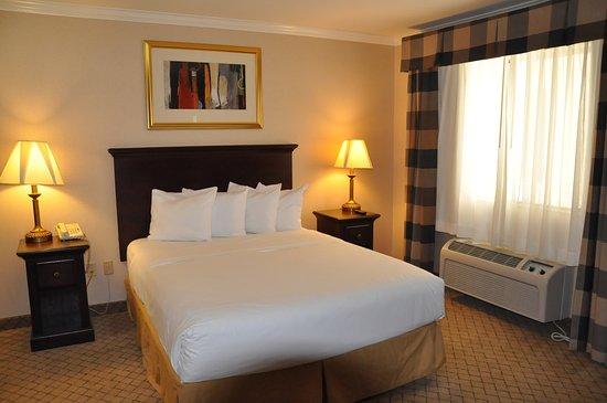 All Star Lodge San Bernardino: Queen Bed