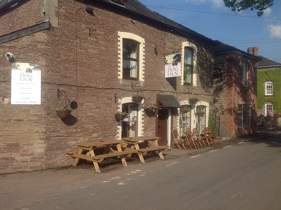 Ewyas Harold, UK: The dog inn is a 500 year old traditional country pub. We have 2 rooms one single and one triple