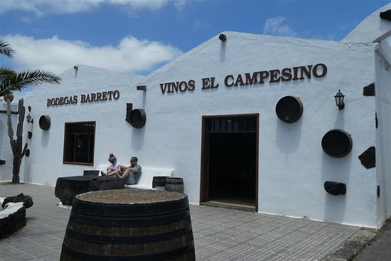 Masdache, Spanien: Vinos El Campesino/ Bodegas Barreto