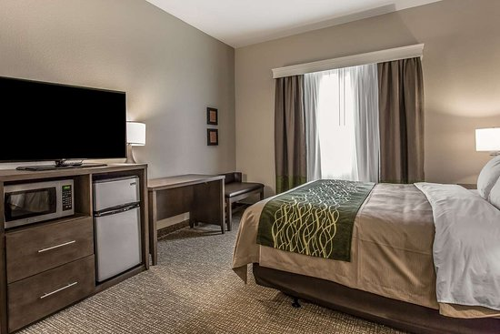 Guest Room Picture Of Comfort Inn Suites Snyder