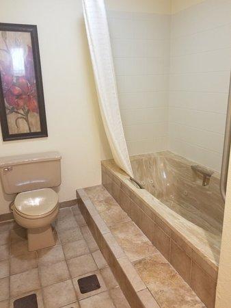 Mishicot, WI: Huge bath tub