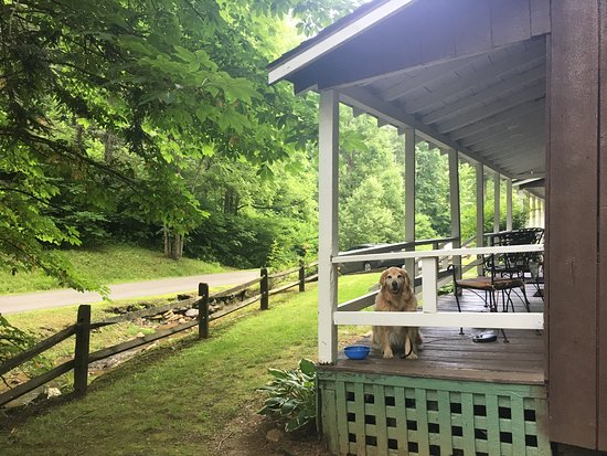 Rustic dog friendly peaceful historic cabins