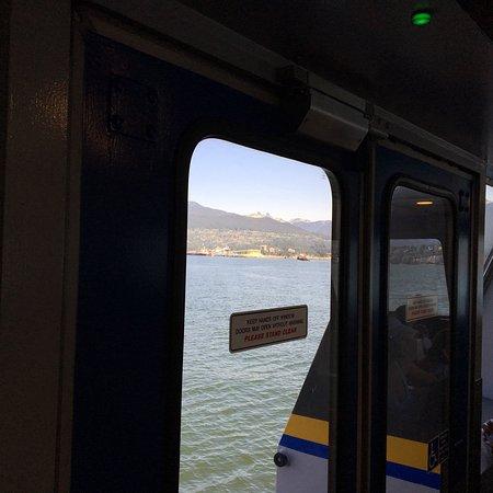 海上巴士照片