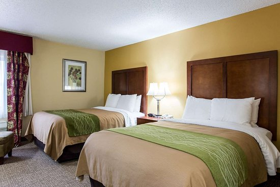 Comfort Inn: Guest room with two beds