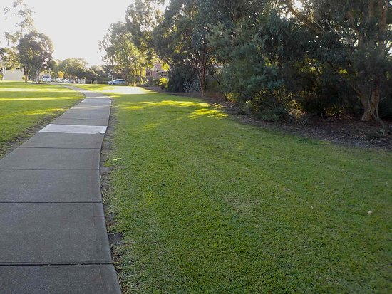well made paths around park
