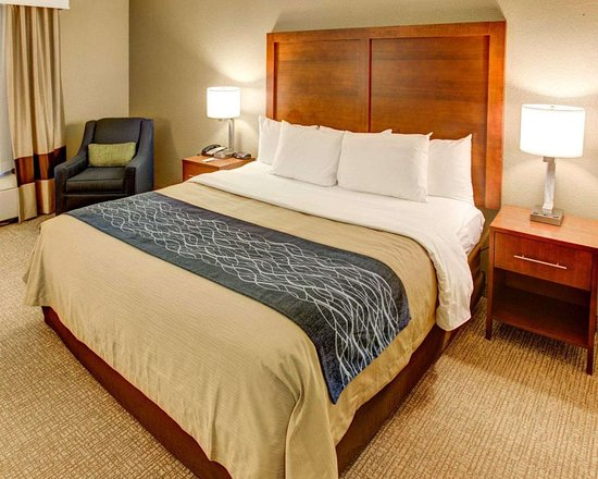 Comfort Inn Conference Center: Guest room with king bed