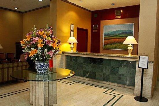 Pedregal Palace Hotel