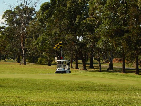 Nearly at the 19th Hole! - Picture of Tanilba Bay Golf Club