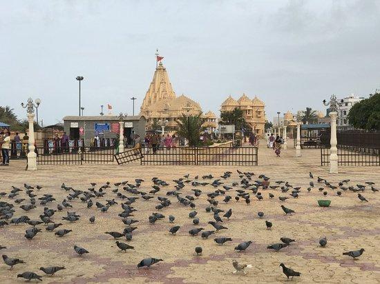 Somnath Temple: IMG_0441_large.jpg