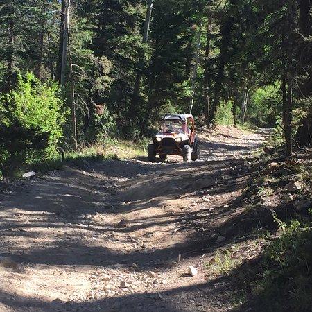 Weezie's Wild Rides