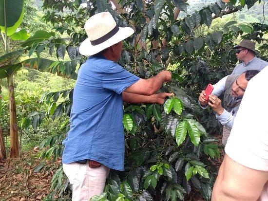 Buenavista, Colombia: IMG_20180621_141533423_large.jpg