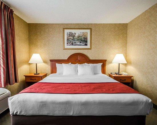 Rockport, IN: Guest room with one bed