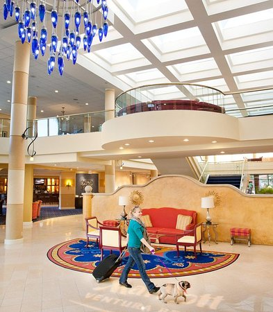 Cheap Hotel Rooms Ventura Ca