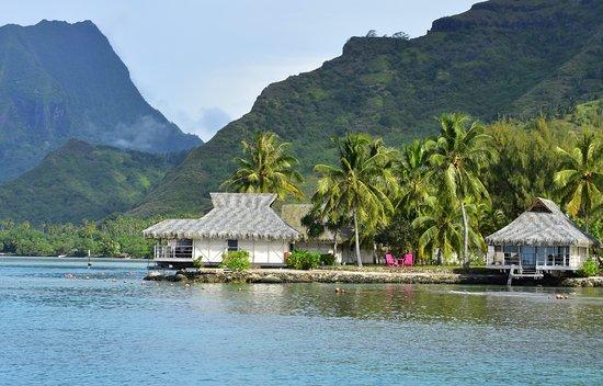 Maharepa, Franska Polynesien: nuestra isla